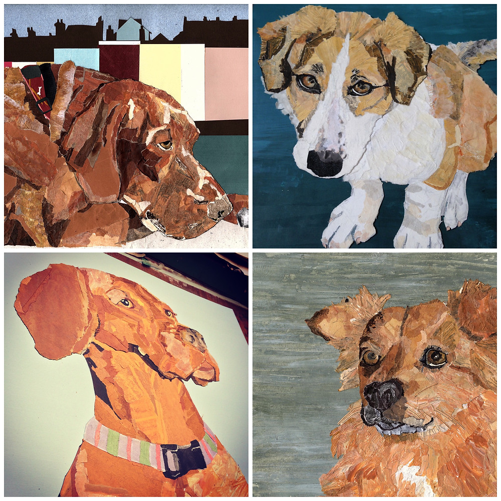 Somerset cool, Ness Robinson, Art in Somerset, Pet Portraits in Somerset, Somerset blog, best blog about Somerset