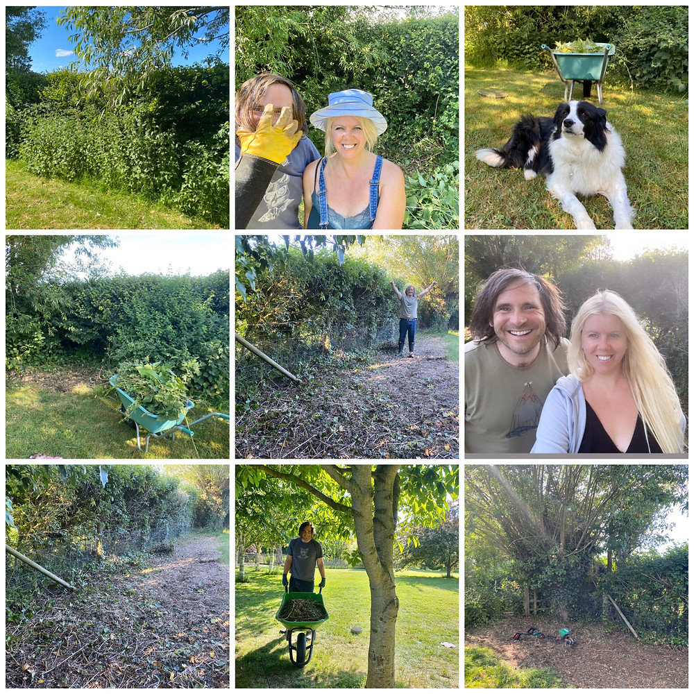 Somerset cool, Somerset blogger, blogs about Somerset, Somerset blog