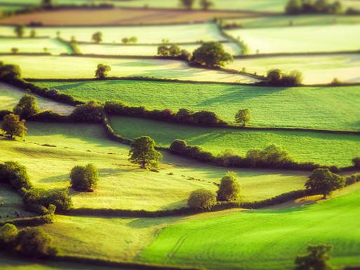 A cool snapshot of Somerset!
