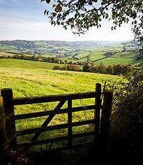 Somerset countryside, Somerset blogger