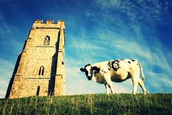 Somerset cool, Somerset blogger