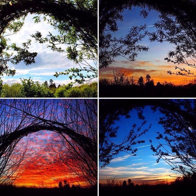 Somerset cool, Longrun Meadow taunton, blogs about Somerset, Somerset blogger, photos of Somerset, picture Somerset