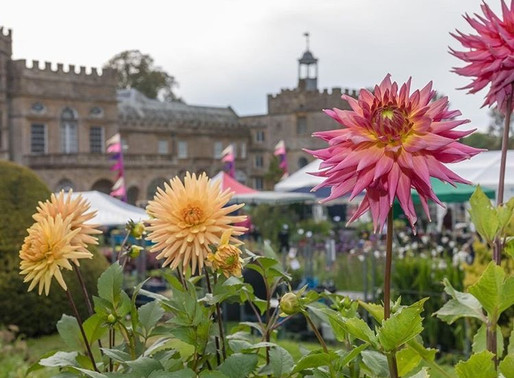 A fantastic festival - gardens, the harvest & gin!