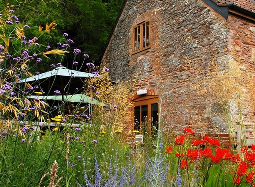 A touch of Somerset magic - dinner at Clavelshay Barn