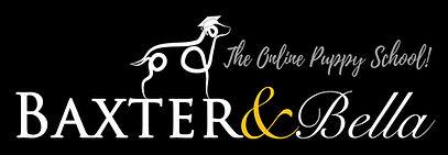 B&B PARTNERS Logo WHITE.jpg