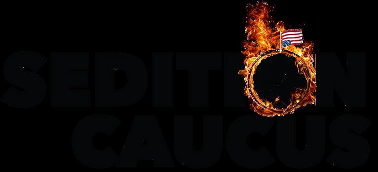 Sedition Caucus | Sedition Caucus PAC | Seditionist | Sedition | Seditionist definition | Fire the Seditionists | Capitol Riot | Donald Trump Trial | Mike Mccaul | Richard Hudson | Mike Garcia | Beth Van Duyne | Scott Perry | Treason | Insurrection