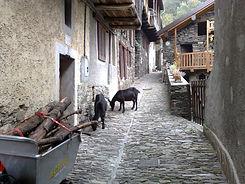 Monteviasco1.jpg