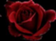 5839434_transparent-png-images-dark-red-