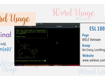 WordUsage Terminal