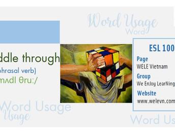 WordUsage Muddle through