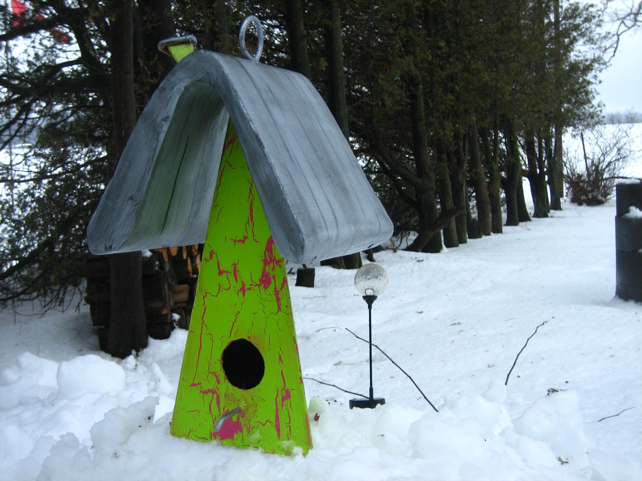 a bird home