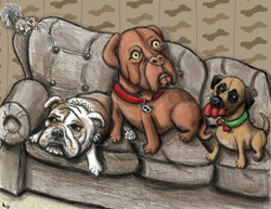 the three doggy friends