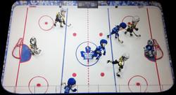 hockey fan mural
