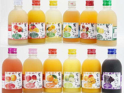 果実のささやき 全12種類セット