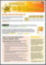 Shine Newsletter Print Screen.JPG