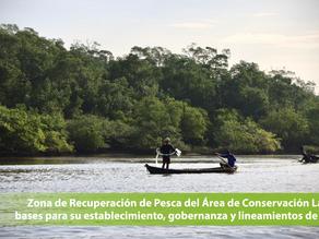 Zona de Recuperación de Pesca del Área de Conservación Las Lisas:bases para su establecimiento, gob