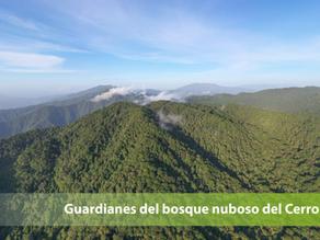 Guardianes del bosque nuboso del Cerro Amay