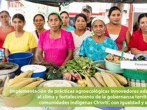Implementación de prácticas agroecológicas innovadoras adaptadasal clima y fortalecimiento