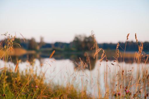 Eistvere järv sügisel