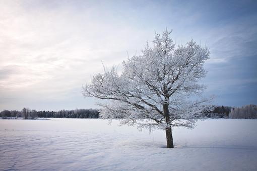 Eistvere järv talvel