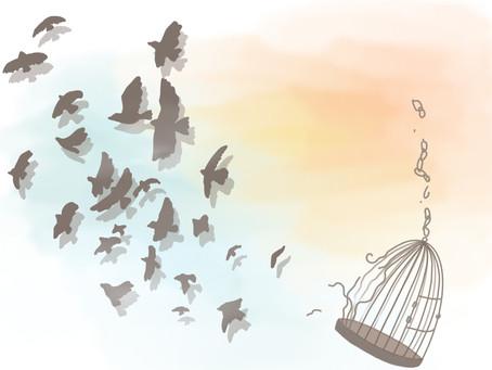自由是一個人的事,也是一整個群體的事