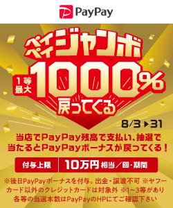 PayPay_machi_jumbo_banner_250-300.png