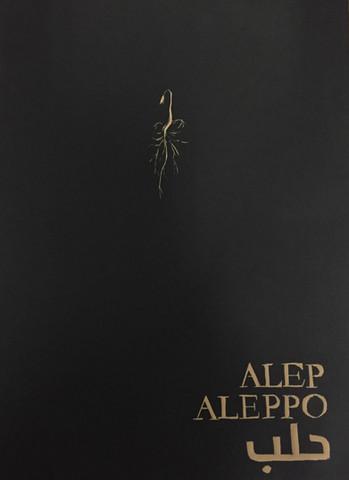 Aleppo Future
