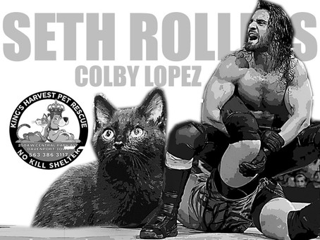 SETH ROLLINS - March 2020 Artist of the Month - #primopizza #WWESethRollins #lopiezpizza