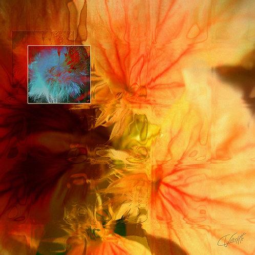 Vasculaflora - FICHIER DIGITAL