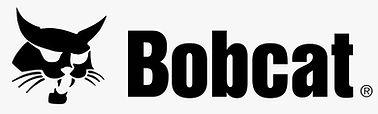 Bobcat.jpeg