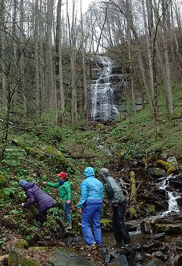 Guided hike to a hidden waterfall.