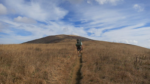 Guided backpacking trip over the Roan Mountain highlands.