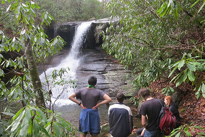 Off-the-beaten-path guided hike to a hidden waterfall.