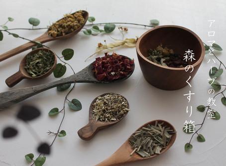 春のお茶会~メディカルハーブブレンドレッスン