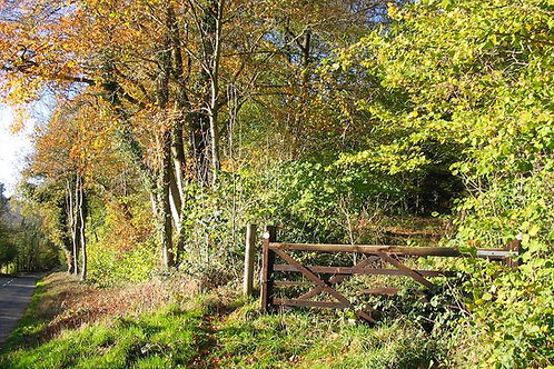 Autumn view, Mortimer Trail Walking holidays, October