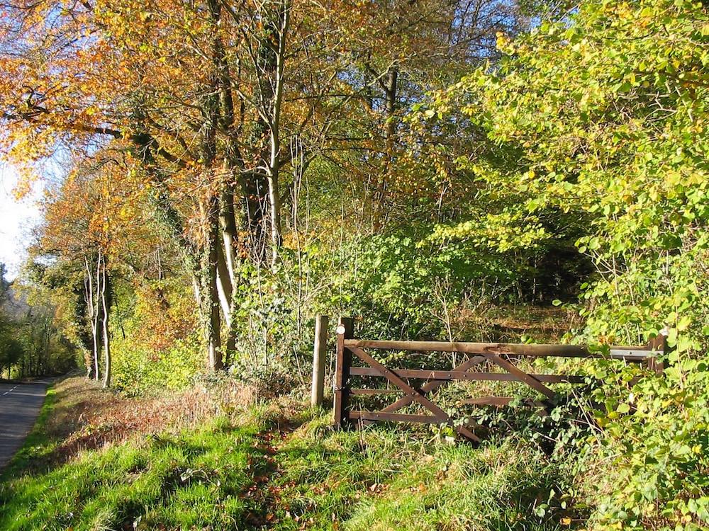 Poke house wood on Mortimer Trail walking holiday