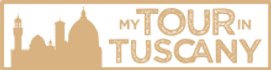MTiT-logo-o-57.png