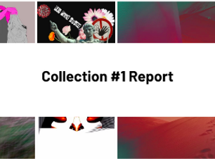collection1report.png