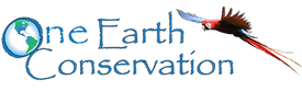 LOGO-for-youtube_edited.png
