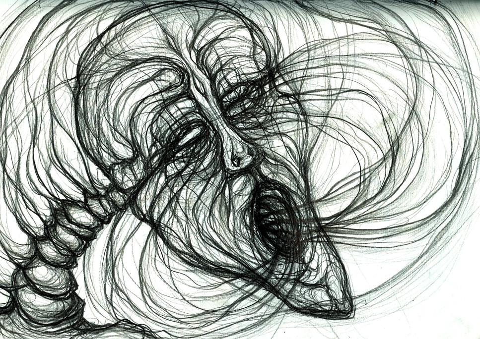 Tauroidal seeing-breathing-seething...
