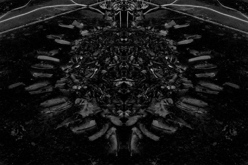 Nesting Instinct (symmetric black).jpg
