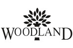 woodland_output[1].jpg