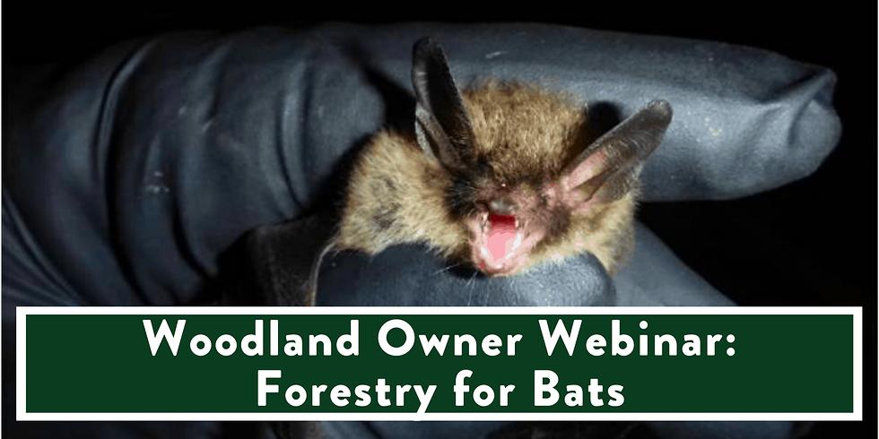 WOODLAND OWNER WEBINAR: FORESTRY FOR BATS