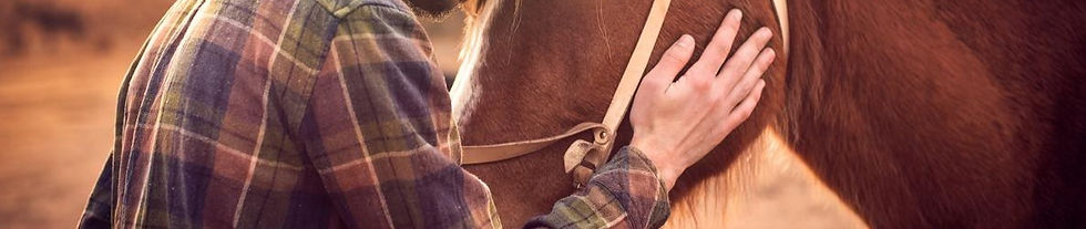 1200-505169356-man-hugs-a-horse_edited_e