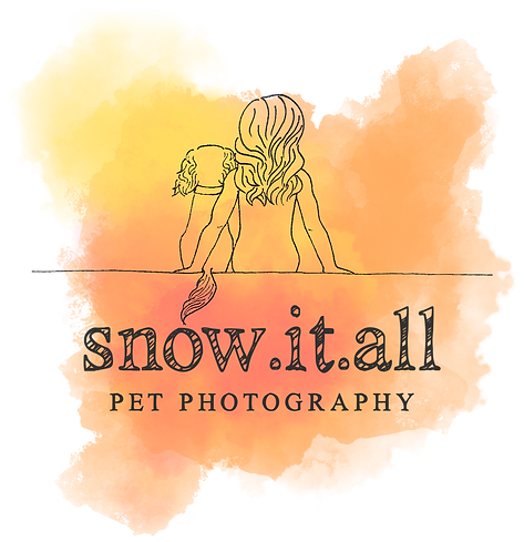 SnowItAllPetPhotographyLogo-blackillustratedv5transparent.png