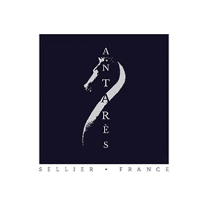 logo-antares-accueil.png