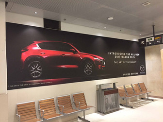 These wall murals can be printed for inside or outside use with uses from months to years!  Printed in house on our large format digital press and installed by our experienced install team!