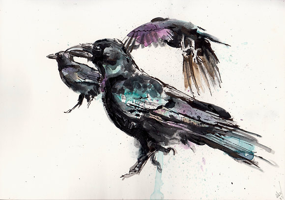 Watercolour Crows  A5 size hand-painted artwork