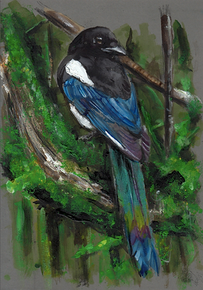 Magpie on Grey 6 with iridescent paint elements on tail.