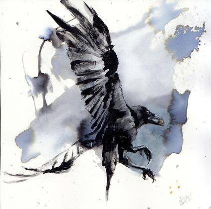 Small Corvid #41 original artwork 14x14cm